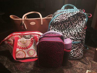 Handbag, lunch bag and backpack