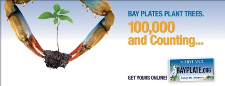 Chesapeake Bay Plate Billboard