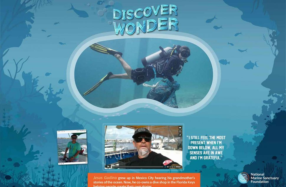 Discover Wonder Ad
