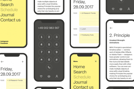Collection of iPhones showing different font options