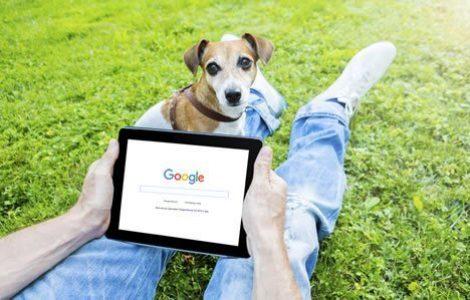 SEO Tips for New Websites