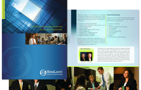 Accountant brochure